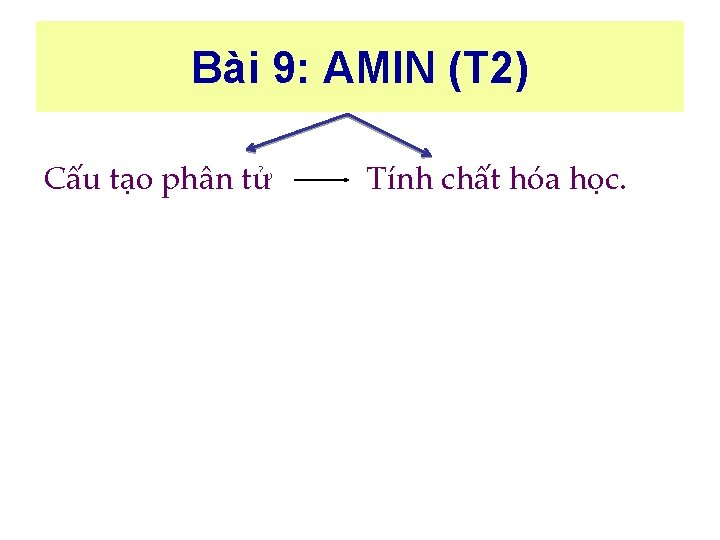 Bài 9: AMIN (T 2) Cấu tạo phân tử Tính chất hóa học.