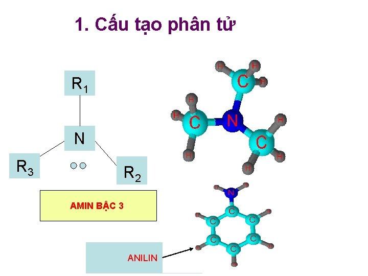 1. Cấu tạo phân tử R H 1 N R H 3 H 2