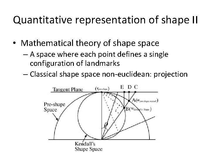 Quantitative representation of shape II • Mathematical theory of shape space – A space