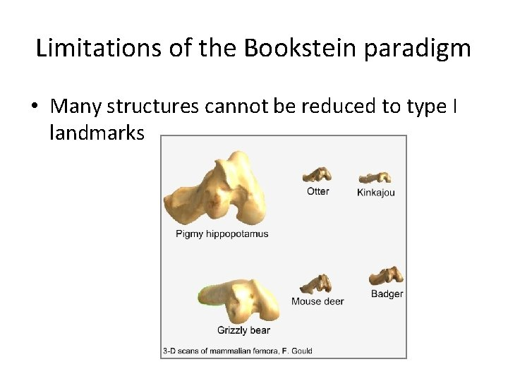 Limitations of the Bookstein paradigm • Many structures cannot be reduced to type I