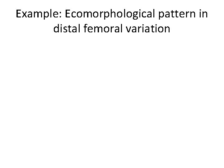 Example: Ecomorphological pattern in distal femoral variation