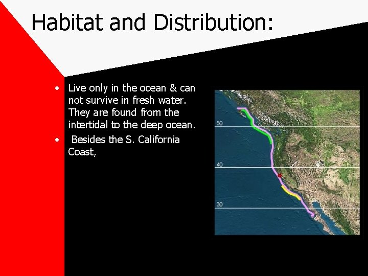 Habitat and Distribution: • Live only in the ocean & can not survive in