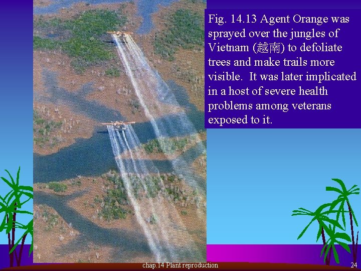 Fig. 14. 13 Agent Orange was sprayed over the jungles of Vietnam (越南) to