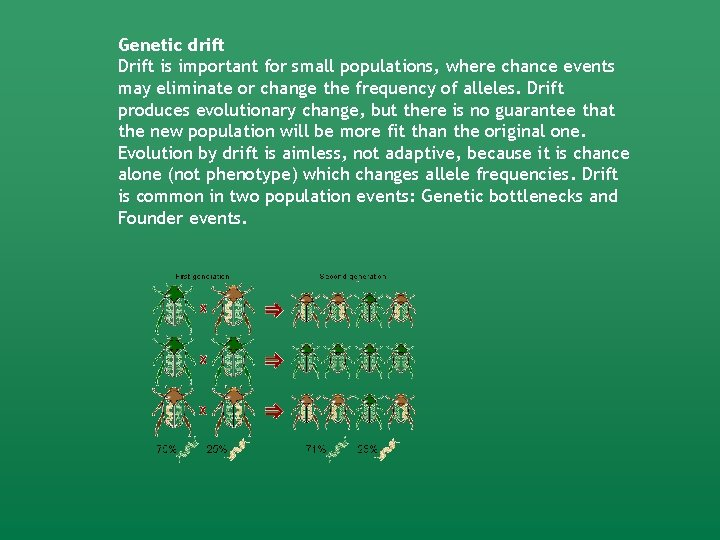 Genetic drift Drift is important for small populations, where chance events may eliminate or