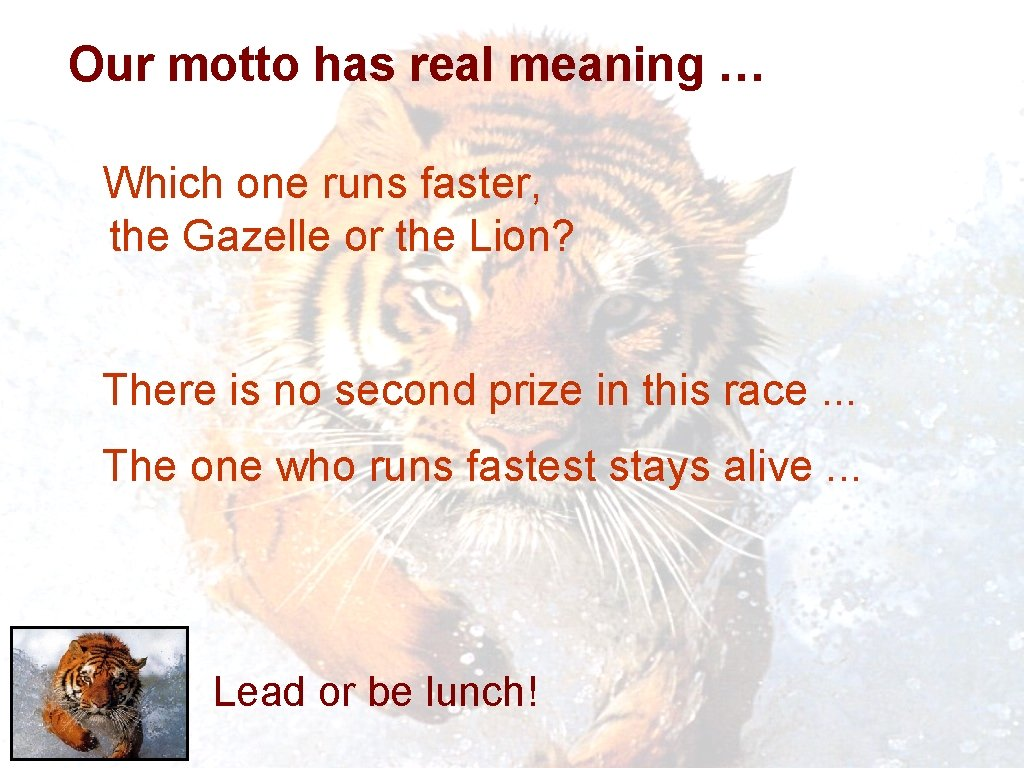 Our motto has real meaning … Which one runs faster, the Gazelle or the