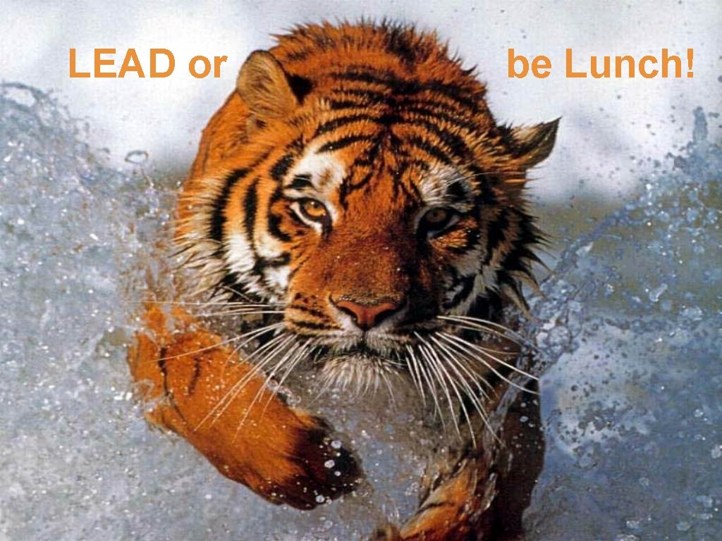 LEAD or Lead or be lunch! be Lunch!