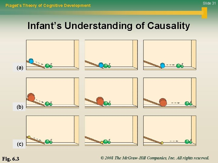 Slide 31 Piaget's Theory of Cognitive Development Infant's Understanding of Causality (a) (b) (c)