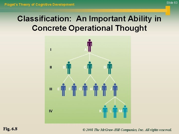 Slide 63 Piaget's Theory of Cognitive Development Classification: An Important Ability in Concrete Operational