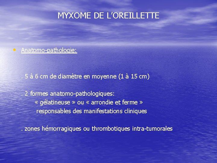 MYXOME DE L'OREILLETTE • Anatomo-pathologie: . 5 à 6 cm de diamètre en moyenne