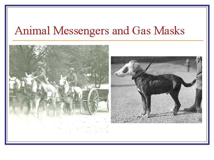 Animal Messengers and Gas Masks