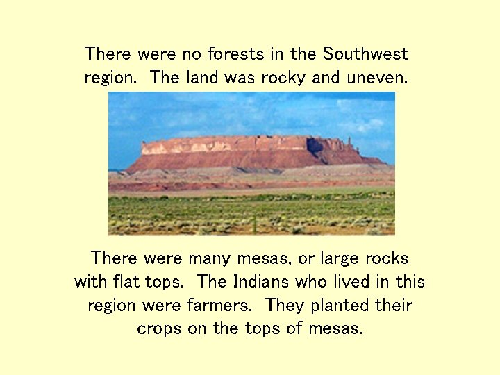 There were no forests in the Southwest region. The land was rocky and uneven.