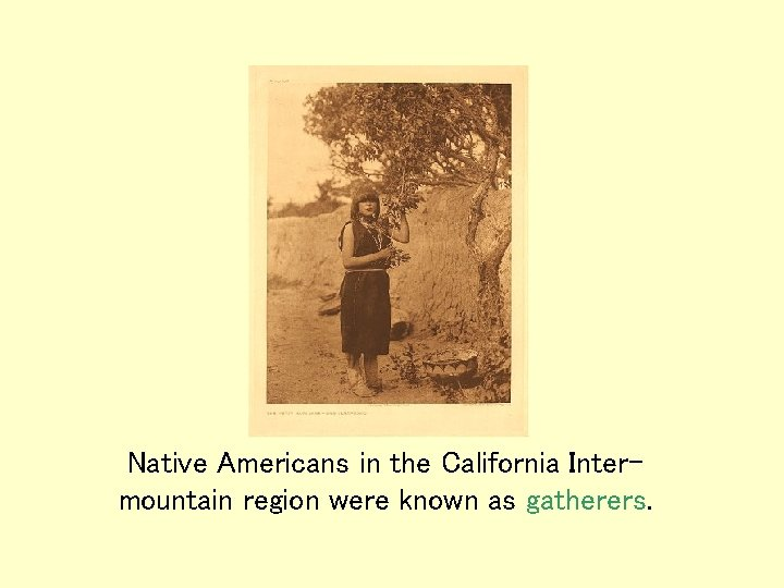 Native Americans in the California Intermountain region were known as gatherers.