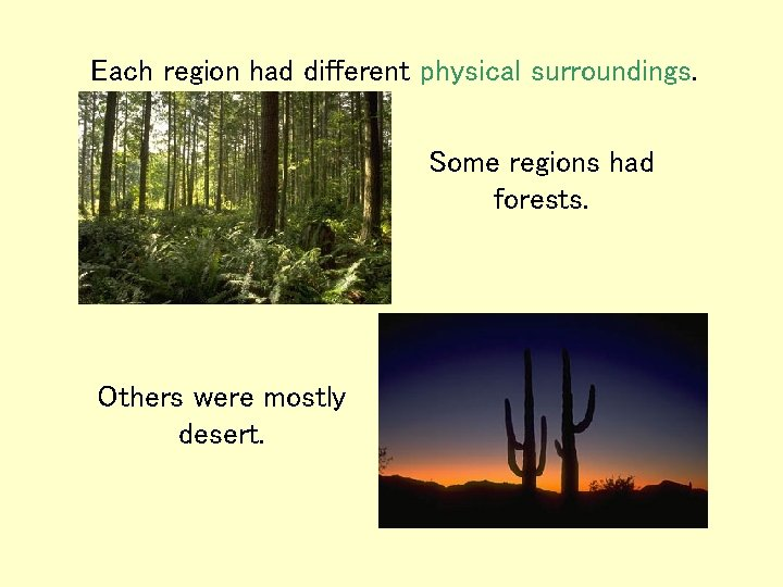 Each region had different physical surroundings. Some regions had forests. Others were mostly desert.