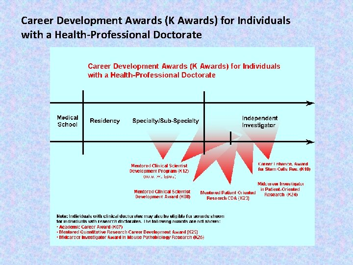 Career Development Awards (K Awards) for Individuals with a Health-Professional Doctorate