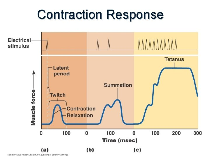 Contraction Response