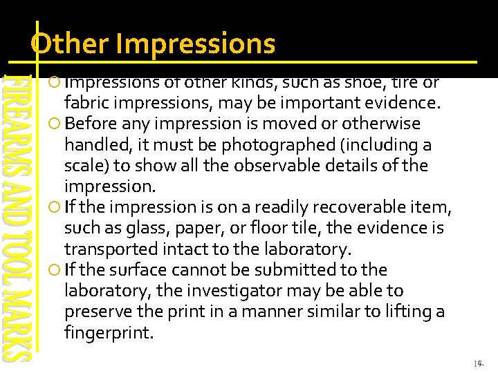 Other Impressions of other kinds, such as shoe, tire or fabric impressions, may be