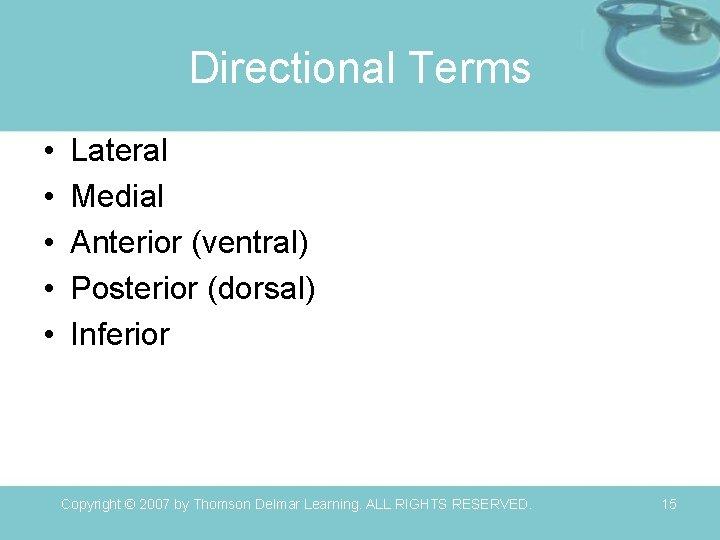 Directional Terms • • • Lateral Medial Anterior (ventral) Posterior (dorsal) Inferior Copyright ©