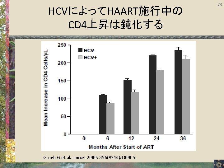 HCVによってHAART施行中の CD 4上昇は鈍化する Grueb G et al. Lancet 2000; 356(9244): 1800 -5. 23