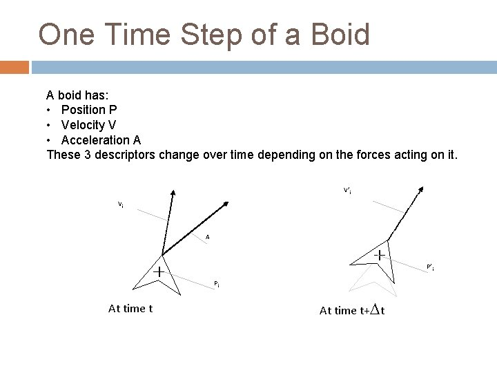 One Time Step of a Boid A boid has: • Position P • Velocity