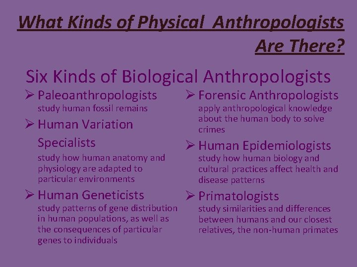 What Kinds of Physical Anthropologists Are There? Six Kinds of Biological Anthropologists Ø Paleoanthropologists