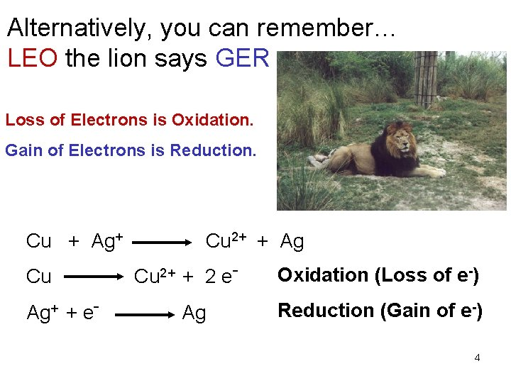 Alternatively, you can remember… LEO the lion says GER Loss of Electrons is Oxidation.
