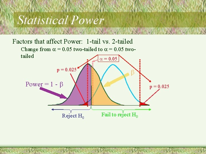 Statistical Power Factors that affect Power: 1 -tail vs. 2 -tailed Change from =