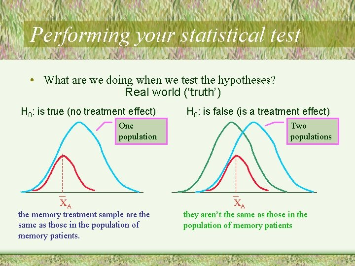 Performing your statistical test • What are we doing when we test the hypotheses?