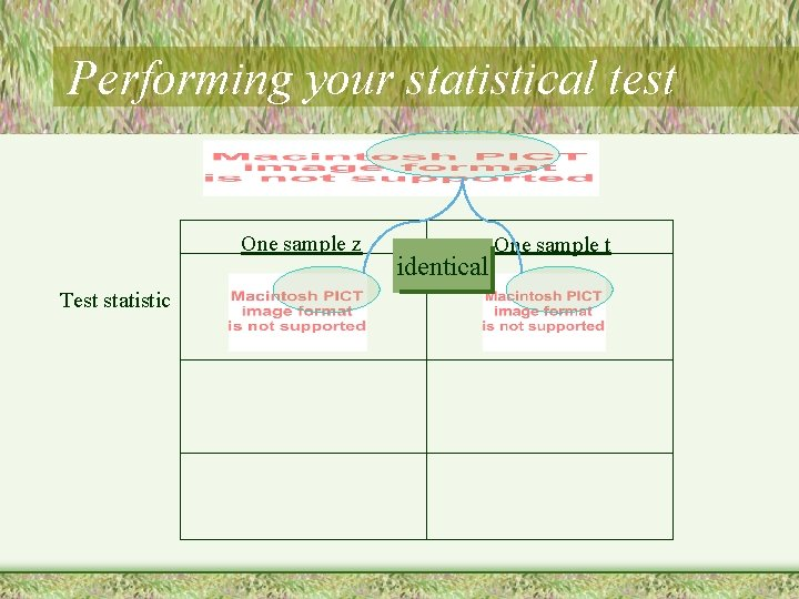 Performing your statistical test One sample z Test statistic identical One sample t