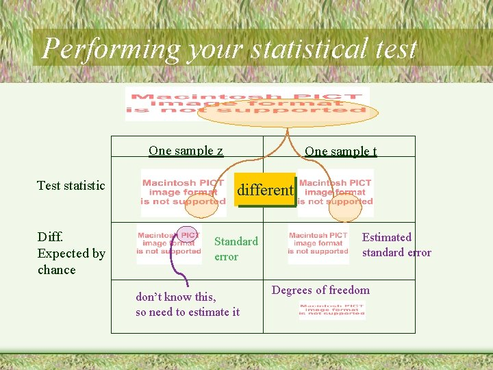 Performing your statistical test One sample z Test statistic Diff. Expected by chance One