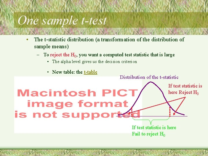 One sample t-test • The t-statistic distribution (a transformation of the distribution of sample