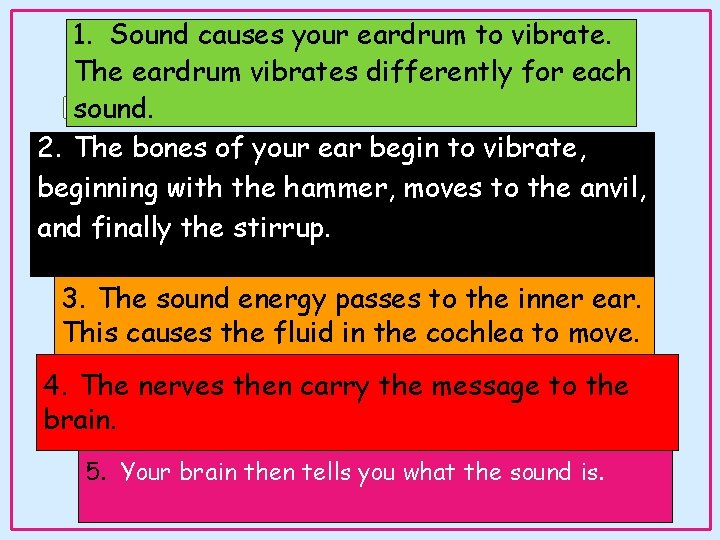 1. Sound causes your eardrum to vibrate. The eardrum vibrates differently for each How