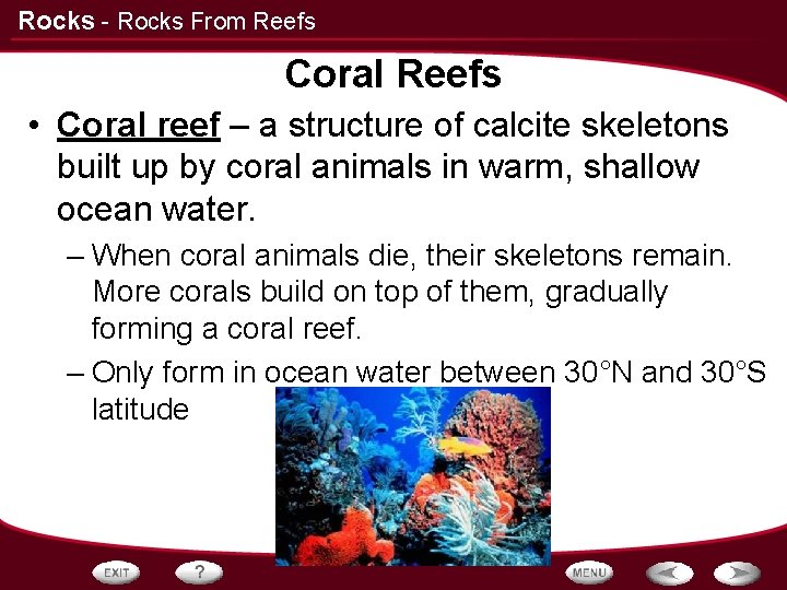 Rocks - Rocks From Reefs Coral Reefs • Coral reef – a structure of