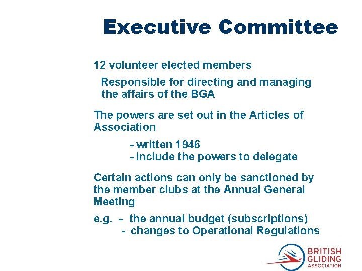 Executive Committee 12 volunteer elected members Responsible for directing and managing the affairs of