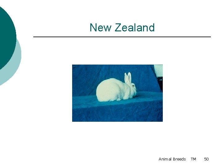 New Zealand Animal Breeds TM 50