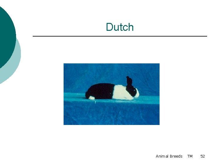 Dutch Animal Breeds TM 52