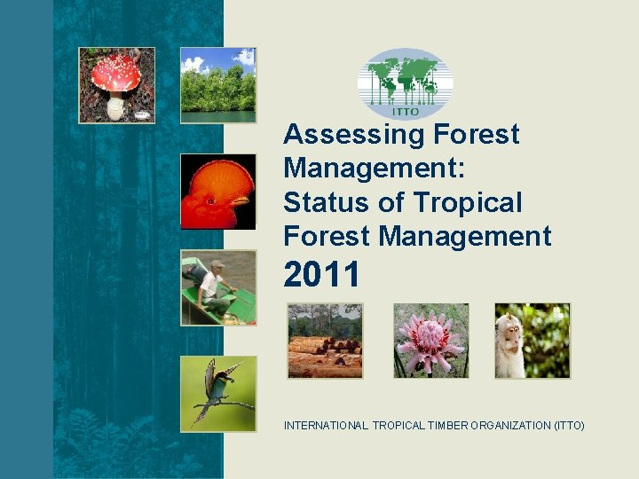 Assessing Forest Management: Status of Tropical Forest Management 2011 INTERNATIONAL TROPICAL TIMBER ORGANIZATION (ITTO)