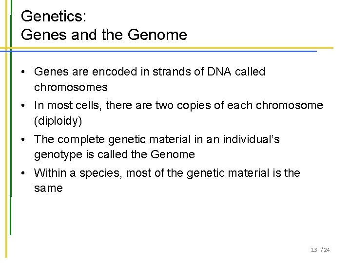 Genetics: Genes and the Genome • Genes are encoded in strands of DNA called
