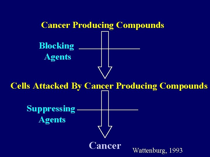 Cancer Producing Compounds Blocking Agents Cells Attacked By Cancer Producing Compounds Suppressing Agents Cancer