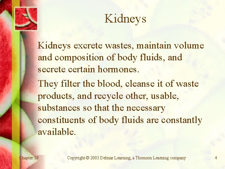 Kidneys excrete wastes, maintain volume and composition of body fluids, and secrete certain hormones.