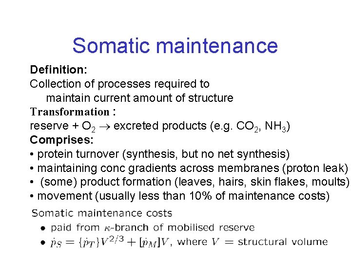 Somatic maintenance Definition: Collection of processes required to maintain current amount of structure Transformation
