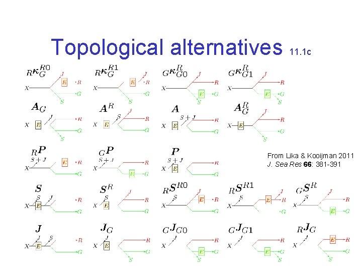 Topological alternatives 11. 1 c From Lika & Kooijman 2011 J. Sea Res 66: