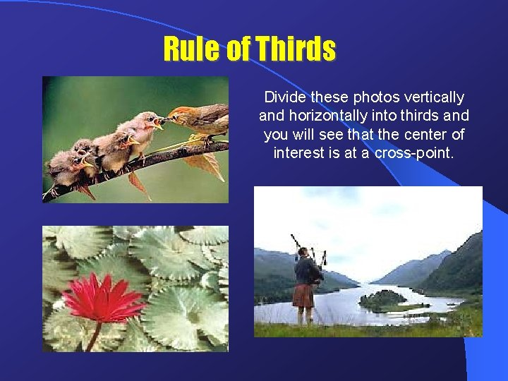 Rule of Thirds Divide these photos vertically and horizontally into thirds and you will