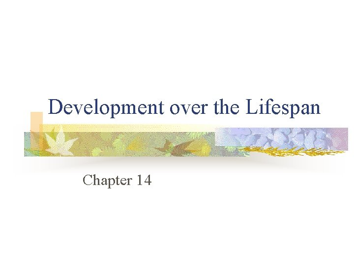 Development over the Lifespan Chapter 14
