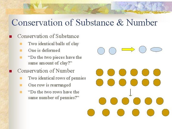 Conservation of Substance & Number n Conservation of Substance n n Two identical balls