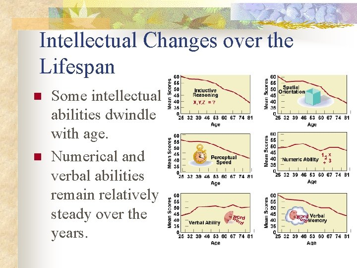 Intellectual Changes over the Lifespan n n Some intellectual abilities dwindle with age. Numerical