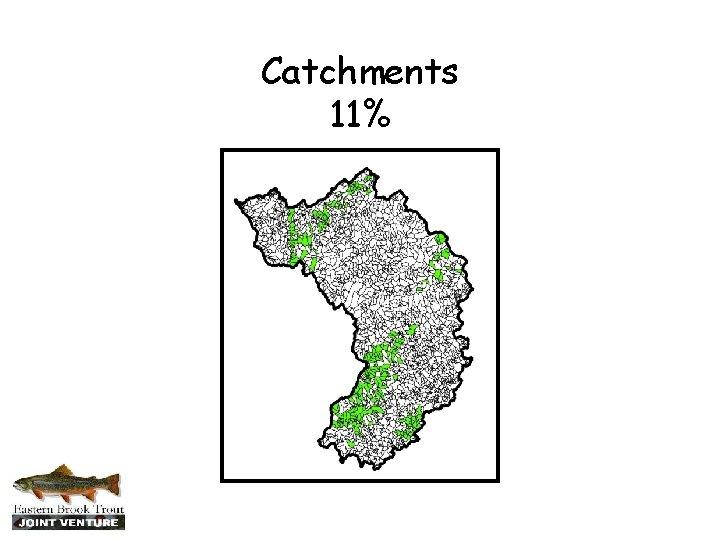 Catchments 11%