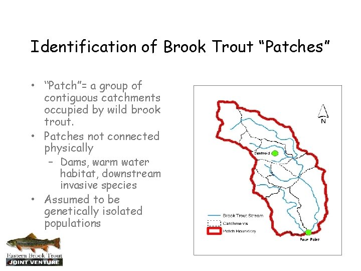 """Identification of Brook Trout """"Patches"""" • """"Patch""""= a group of contiguous catchments occupied by"""