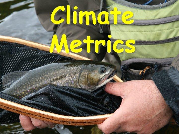 Climate Metrics