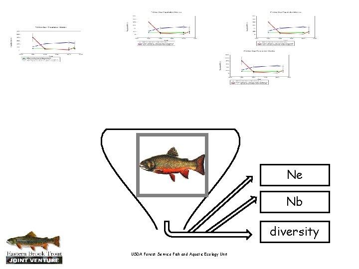 Ne Nb diversity USDA Forest Service Fish and Aquatic Ecology Unit