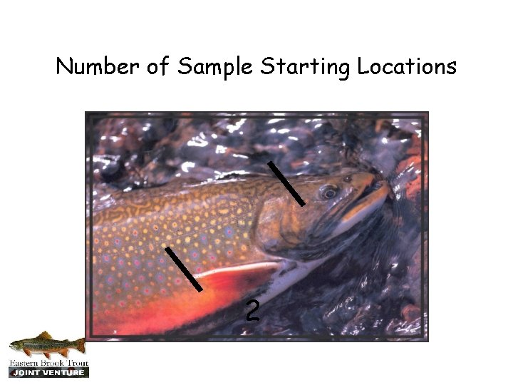 Number of Sample Starting Locations 2